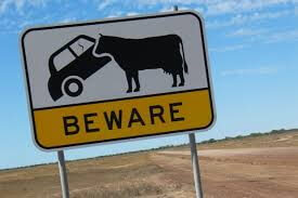 Danger COWS